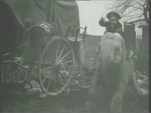 Bout_de_Zan Elephant