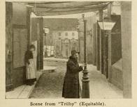 Trilby3
