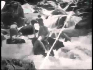 Bathing in a Stream